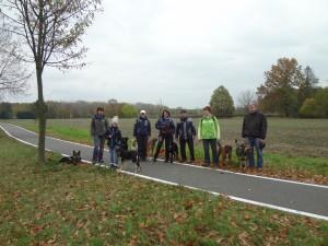 Hundewanderung in Koselitz